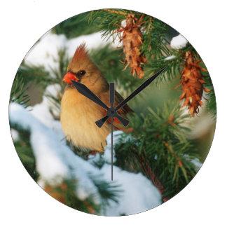 Northern Cardinal in tree, Illinois Large Clock