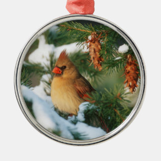 Northern Cardinal in tree, Illinois Metal Ornament