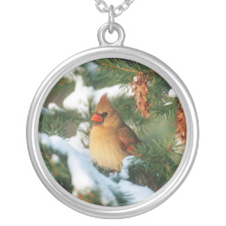 Northern Cardinal in tree, Illinois Silver Plated Necklace
