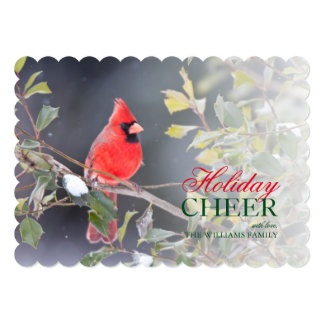 Northern Cardinal male in American Holly 13 Cm X 18 Cm Invitation Card