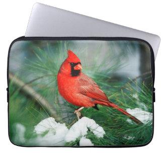 Northern Cardinal male on tree, IL Laptop Sleeve