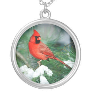 Northern Cardinal male on tree, IL Silver Plated Necklace