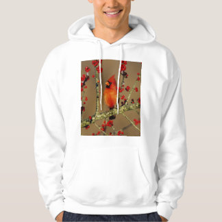 Northern Cardinal male perched, IL Hoodie