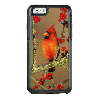 Northern Cardinal male perched, IL OtterBox iPhone 6/6s Case