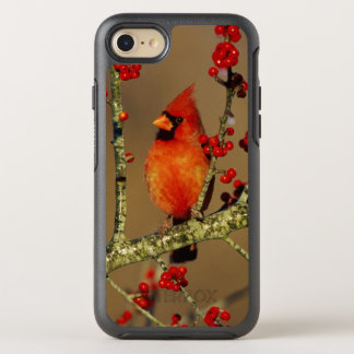 Northern Cardinal male perched, IL OtterBox Symmetry iPhone 8/7 Case
