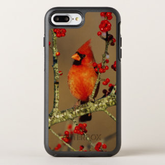 Northern Cardinal male perched, IL OtterBox Symmetry iPhone 8 Plus/7 Plus Case