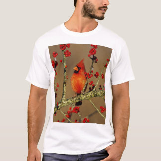 Northern Cardinal male perched, IL T-Shirt