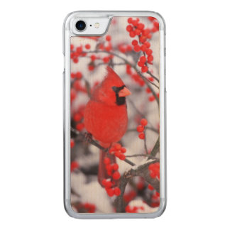 Northern Cardinal male, Winter, IL Carved iPhone 7 Case