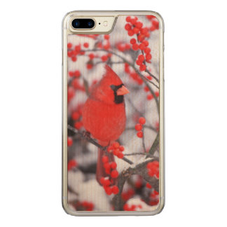 Northern Cardinal male, Winter, IL Carved iPhone 7 Plus Case