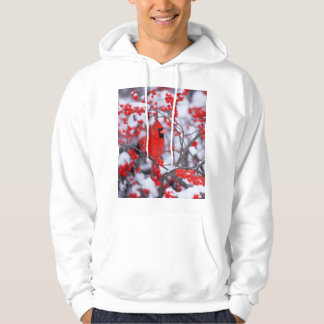 Northern Cardinal male, Winter, IL Hoodie