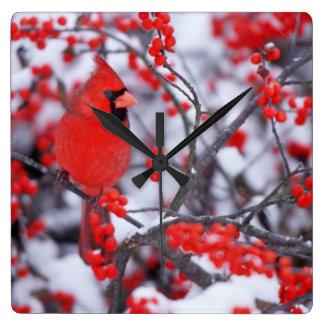 Northern Cardinal male, Winter, IL Square Wall Clock