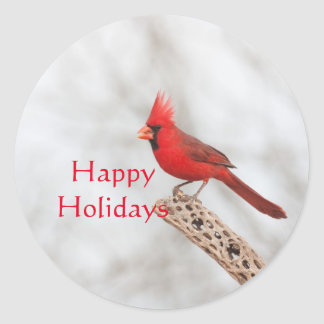 Northern Cardinal on a branch, Happy Holidays Classic Round Sticker