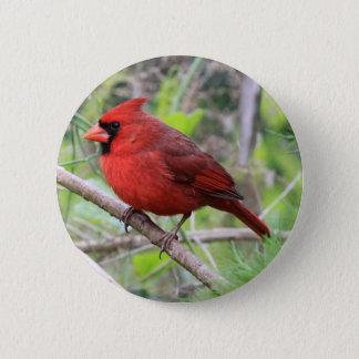 Northern Cardinal Photo 6 Cm Round Badge