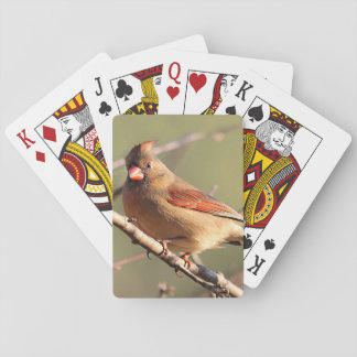 Northern Cardinal Playing Cards