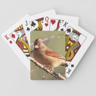 Northern Cardinal Poker Deck