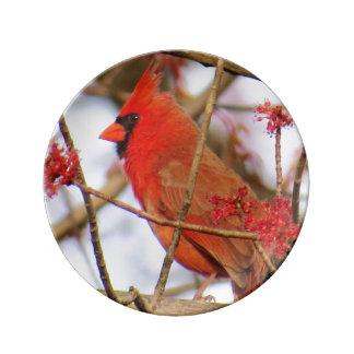 Northern Cardinal Porcelain Plate