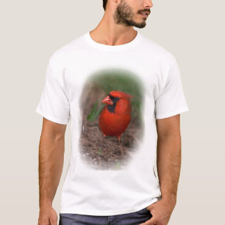 Northern Cardinal shirt