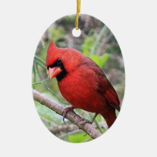 Northern Cardinal -- Traditional Christmas Bird Christmas Ornaments