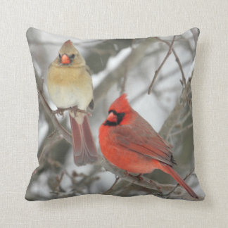 Northern Cardinals Cushion