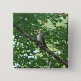 Northern Flicker in Tree 15 Cm Square Badge