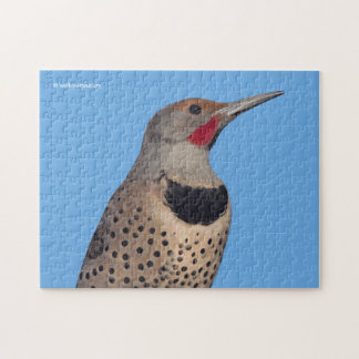 Northern Flicker Woodpecker in the Sun Jigsaw Puzzle