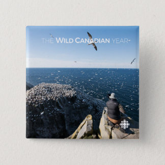 Northern Gannets 15 Cm Square Badge