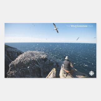 Northern Gannets Rectangular Sticker