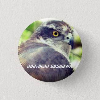 Northern Goshawk 3 Cm Round Badge