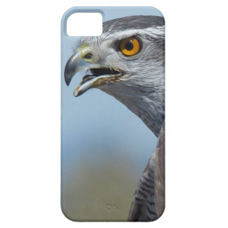 Northern Goshawk Screeching Case For The iPhone 5