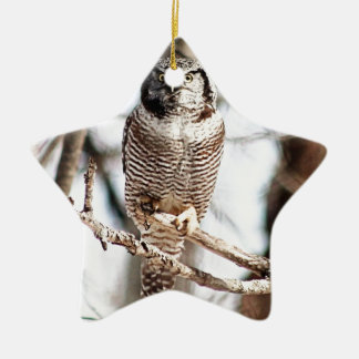 Northern Hawk Owl Christmas Tree Ornament