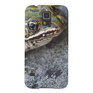 Northern Leopard frog, See-through Island, Galaxy S5 Cover