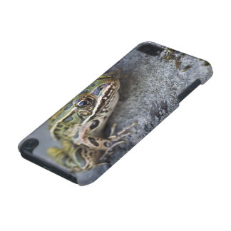 Northern Leopard frog, See-through Island, iPod Touch (5th Generation) Cases