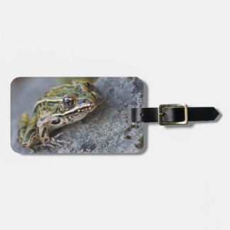 Northern Leopard frog, See-through Island, Luggage Tags