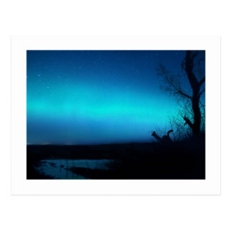 Northern Lights and a pond Postcard
