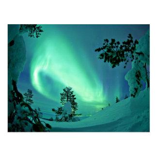Northern Lights at Winter Postcard