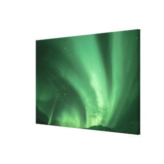 Northern lights, Aurora borealis, over foothills Canvas Prints