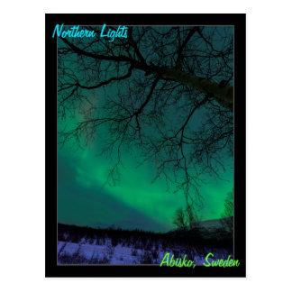 Northern Lights in Sweden Postcard