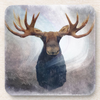 Northern Lights Moose Coaster