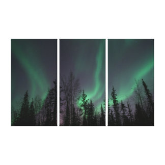 Northern Lights through the Trees Canvas