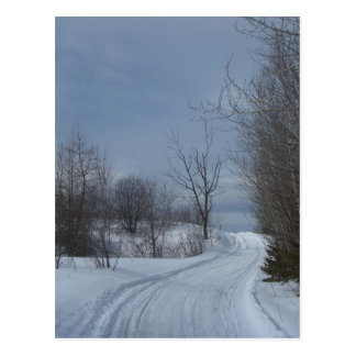 Northern Maine 19 Postcard