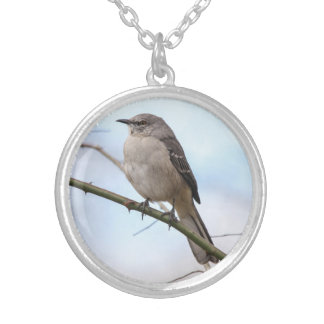 Northern Mockingbird Silver Plated Necklace