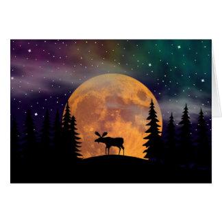 Northern Nights- Northern Lights Card