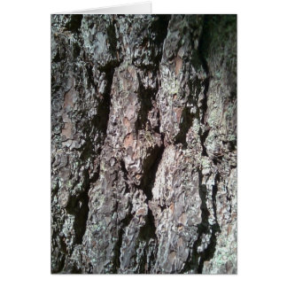 Northern Pine Tree Bark Card