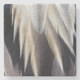 Northern Pintail Duck feather Stone Coaster
