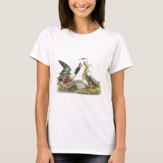 Northern Shoveler by Audubon T-Shirt