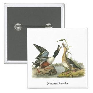 Northern Shoveler, John Audubon Pinback Button