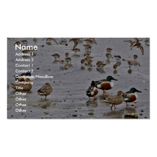 Northern Shovelers Business Card Templates