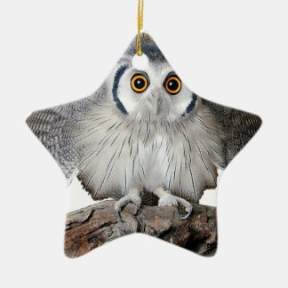 """""""Northern White-faced Owl"""" オーナメント"""