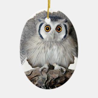 """Northern White-faced Owl"" クリスマスツリーオーナメント"