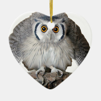 """""""Northern White-faced Owl"""" Christmas Tree Ornaments"""